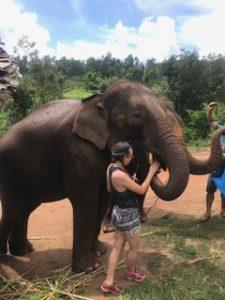 elephant project thailand